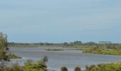 delta řeky Rhony