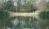 Dabluv rybnik 4