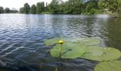 Nadherna zakouti reky Moselly