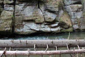 reka-kamenice