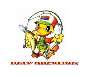 Ugly Duckling_2