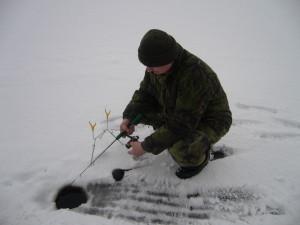 ryby_zima