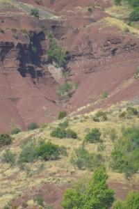 Kaňon na kopci kolem Salagou