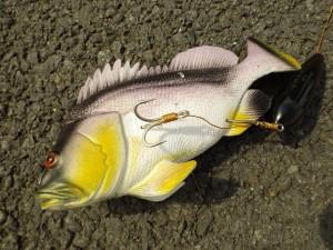 podvodni_splavek_nastrazeni_ryby