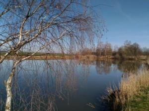buda_rybolov