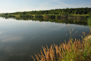 jezero_za_pilou