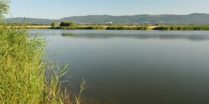 jezero_za_pilou_rybareni