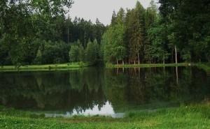 rybnik_brodsky