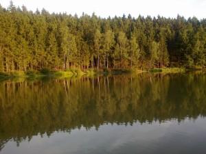 rybnik_parez