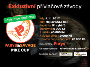 PIKE-CUP-banner-maly-vcetne-med.partneru
